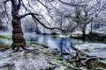 Bueges spring under snow (France)