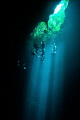 Divers wait in the light at the surface.