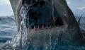 lemon shark eating