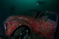 Volkswagen Beetle attracts more attention underwater than it did topside.