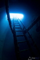 Taken within Igara wreck. The stairway up onto the deck and the natural light shining down into wreck makes a spectacular story. Thus, aptly named as