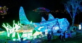 As part of this years Taronga Zoo Vivid there was these light sculptures of a Port Jackson Shark and Turtle