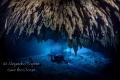 Diver in Dream Gates, Playa del Carmen Mexico