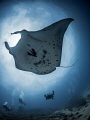 Zephyr in the sky ...