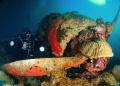 SEAPLANE Fish 'n Fins Palau