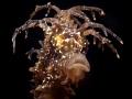 Hippocampus guttulatus Speckled Seahorse Reggae style