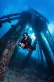 Scuba diver Natalia checking out the obscure structures of the Salt Pier  Bonaire