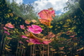 The colourful Lily Pads of Cenote Carwash  Mexico