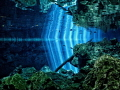 The way light finds it way through the jungle into the fresh water of the Cenotes in the Yucatán is truly magical.