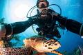Selfie with a Turtle, Half Moon Caye, Belize