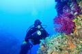 Marettimo s Island  Blutek Diving