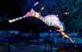 TARONGA ZOO LIGHT SCULPTURE OF A WEEDY SEA DRAGON VIVID SYDNEY