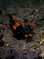 Creep
