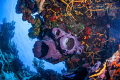 Reef in Palancar  Cozumel M xico