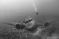 C47 Dakota Military Airplane Wreck