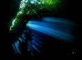 The green cave . Raja Ampat Nikon D800E , 10,5 mm . No strobo.