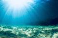 Sun rays/ The beautiful, vast sandy bottom.