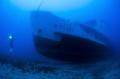 Passenger Shipwreck