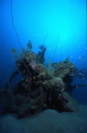 Japanese mini sub lying parallel to the Taisho Maru Wreck  New Britain island  Kavieng area