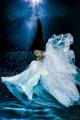 White fox fairy