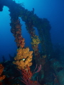 Wreck of the RMS Rhone  Salt Island  British Virgin Islands