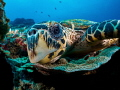 Oi you  it s Friday 