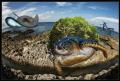 Memories of Cayman islands