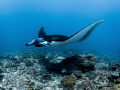 Sorcery