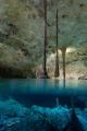 Cenote Tacbi-Ha (Hidden Water) in Tulum (Mexico) ISO 1600 f/1.8 1/50