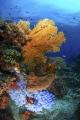 Seascape from Bangka Islandia Nort Sukawesi Indonesia