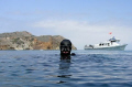 Divers returning to Catalina Island after the fire in May 2007.