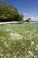 Kri island @ Raja Ampat