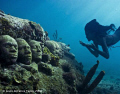 Marie free dives down to underwater faces. Jason deCaires Taylor. Each profile is a cast of  students from Tamworth community college.