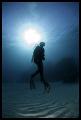 diver silhouette, canon 5D, Wadi Lahmi 2007