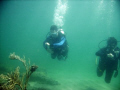 Open Water Divers navigating the inside reef at Lauderdale by the Sea