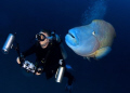 Me and my buddy. This was taken at Fish Head in the Maldives. One of my buddies was totally unaware that he was being followed by the napoleon wrasse.