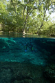 Scuba training @ Ginnie Springs