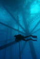 Diving working oil platform in the Gulf of Mexico.....