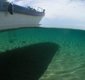 This photo was taken in 2007, Ambom, Indonesia. Between the dives, we had a rest on the sand beach, the surface is smooth, we can see not only shadow of the boat but also the water mark on the sand and the color of water becomes to green and blue.