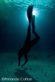 Freediver at night.  Tiger Beach, Bahamas