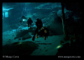 Dos Ojos (Two Eyes) Cenote in Mexico. Shot with Canon Rebel XTi & my Equinox video lights.