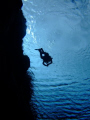 this photo are taken in Silfra /Thingvellir in Iceland.  the camera is Fuji F30 bellonging to my brother Svanur who is the diver on the photo.  The water is 3 degree celsius and I was at approx 12 meters deep when I took the photo.