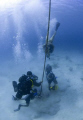 U.S. Navy Divers training with members of the Barbados Coast Guard of the coast of Bridgetown, Barbados.