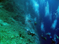 Divers' bubbles at Shaab Sharm