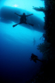 Freefallin the wall.  Dive Master Paul in Tubbataha. Azores Live-a-board in the background.