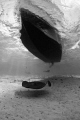 Southern Stingray passing under a dive boat