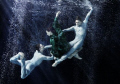 VIENNA STATE OPERA BALLET COMPANY UNDERWATER - thanks for a great show, guys!