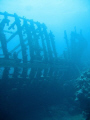 The wooden wreck - Sh'ab Sharm