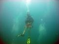 confidant diver