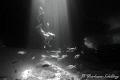 Skin Diver exploring Thunderball Caves